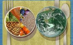"""Chúng ta đang """"ăn"""" Trái đất?"""