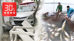 Bản tin 30s Nóng: Mệt mỏi xếp hàng ở sân bay; 51 tấn cá chết trên sông Mã; Nữ tài xế húc văng 2 mẹ con