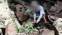 Video: Gỗ quý trong rừng đặc dụng Cham Chu bị tàn phá