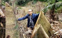 'Lâm tặc' lấy hàng trăm cây gỗ, kiểm lâm, chính quyền vẫn... giải trình