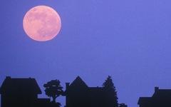 Ngắm 'trăng hồng' đẹp lung linh trên trời đêm