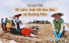 Hạt gạo Việt: 30 năm, một nỗi đau đáu về thương hiệu