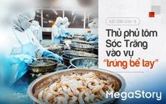 Vượt sóng COVID-19: Thủ phủ tôm Sóc Trăng vào vụ 'trúng bể tay'