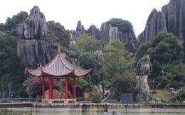 Côn Minh: Thành phố của hoa và đá