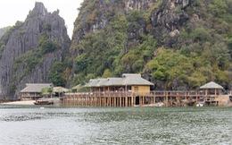 Vườn quốc gia Cát Bà nham nhở vì bị 'xâm hại'