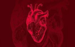 Phần mềm AI phát hiện tình trạng tim ngừng tuần hoàn sẽ ra mắt trong mùa hè này
