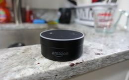 Amazon xác nhận việc loa thông minh Echo rò rỉ thông tin