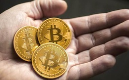 """BIS cảnh báo bitcoin có thể """"lấn át và phá vỡ"""" mạng Internet"""