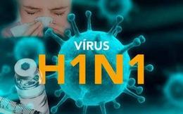 Bệnh nhân thứ hai tử vong ở TP.HCM vì mắc cúm A H1N1