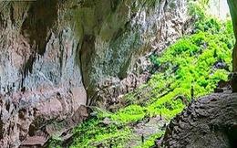 Quảng Bình thêm 3 tháng khám phá hang Đại Ả, Over và Pygmy
