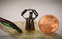 Robot nhỏ bằng đồng xu có thể thực hiện các cuộc vi phẫu thuật