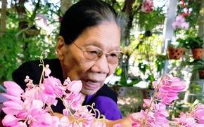 Nhà thơ Lê Giang nhận giải thưởng văn học TP.HCM ở tuổi 90