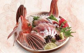 8000 du khách mỗi ngày tại Fukuoka chợ cá lớn nhất Nhật Bản