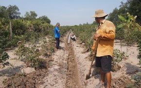 Khởi sắc dạy nghề lao động nông thôn