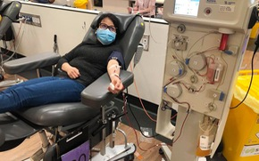 Đi hiến máu giữa dịch, người Việt ở Úc phải tìm cách... tăng cân