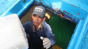 Gác nỗi buồn, ngư dân Khánh Hòa hối hả ra khơi