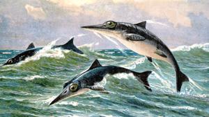 Phát hiện hóa thạch ngư long 152 triệu năm