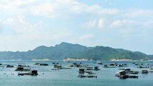 Đi chơi đảo Bình Ba từ Sài Gòn chỉ với 2 triệu đồng