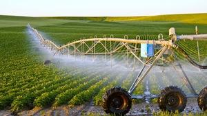 Kinh nghiệm khởi nghiệp nông nghiệp Israel