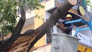 Nha Trang ngổn ngang sau bão mạnh
