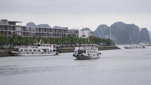 Tạm dừng tàu tham quan Hạ Long bị tố 'chặt chém' du khách