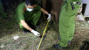 Đâm chém ở Đắk Lắk là do tranh chấp đất dai dẳng