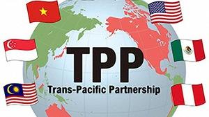 TPP-11 có thể được quyết định ngay ở Đà Nẵng