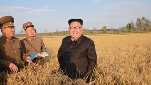 Ông Trump nói 'Đừng phí công đối thoại với Triều Tiên'