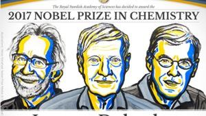 Công trình đoạt Nobel Hóa học giúp 'mục sở thị' virus Zika