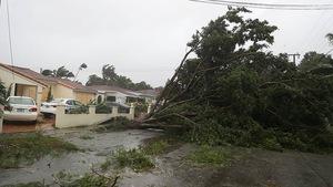 Bão Irma trút cơn thịnh nộ xuống Florida