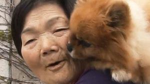 Bà cụ Hàn Quốc cõng chó trên vai suốt ngày
