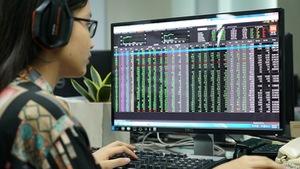 Chứng khoán 'đã vui trở lại', thị trường tràn ngập sắc xanh