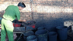 Sản xuất cà phê bột từ vỏ cà phê trộn... pin con ó