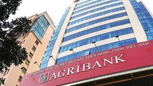 Gây thất thoát trăm tỉ, cựu sếp Agribank Mạc Thị Bưởi hầu tòa