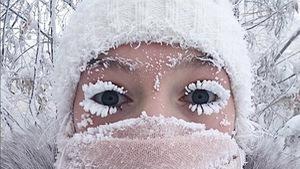 Hình ảnh khó tưởng ở nơi lông mi cũng đóng băng