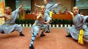 Cuộc thi ngôi sao võ thuật Trung Quốc toàn cầu