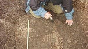Phát hiện hóa thạch thủy quái khổng lồ ở Na Uy