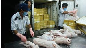 TP.HCM: chủ động tìm nguồn thịt sạch