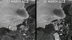Sóng thần Nhật Bản làm vỡ băng Nam Cực