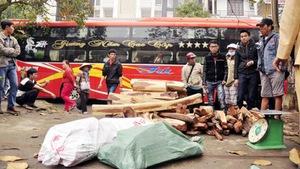 Bắt xe khách chở gỗ trắc lậu