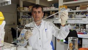 """Phát hiện tế bào gốc """"đa năng"""" giúp chữa nhiều loại bệnh"""