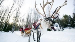 Đưa con đến quê hương ông già Noel bằng cách nào?