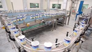 Vinamilk mở rộng vùng nguyên liệu sang Lào