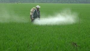 Nhập khẩu phân bón, thuốc trừ sâu giảm mạnh
