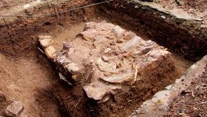 Xem clip tìm lăng mộ vua Quang Trung
