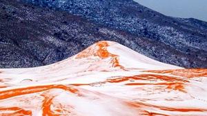 Tuyết rơi ở sa mạc Sahara tạo cảnh tượng hi hữu