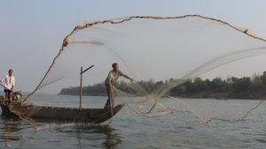 Cần chấm dứt dự án cải tạo dòng Mekong