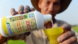 Thuốc bảo vệ thực vật gây ung thư: Vô tư sử dụng