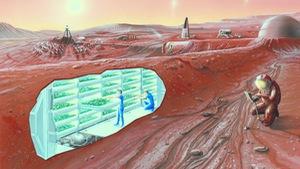 Giấc mơ chinh phục sao Hỏa có đáng tin?