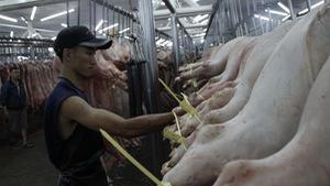 Chợ Bình Điền, Hóc Môn chỉ bán thịt heo có truy xuấtnguồn gốc